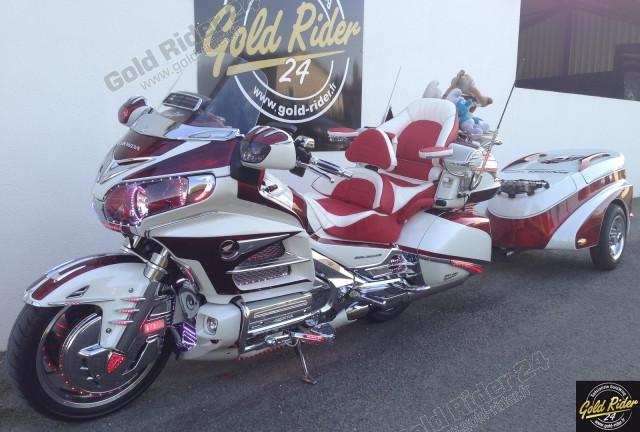 Projet Gold Rider 2014