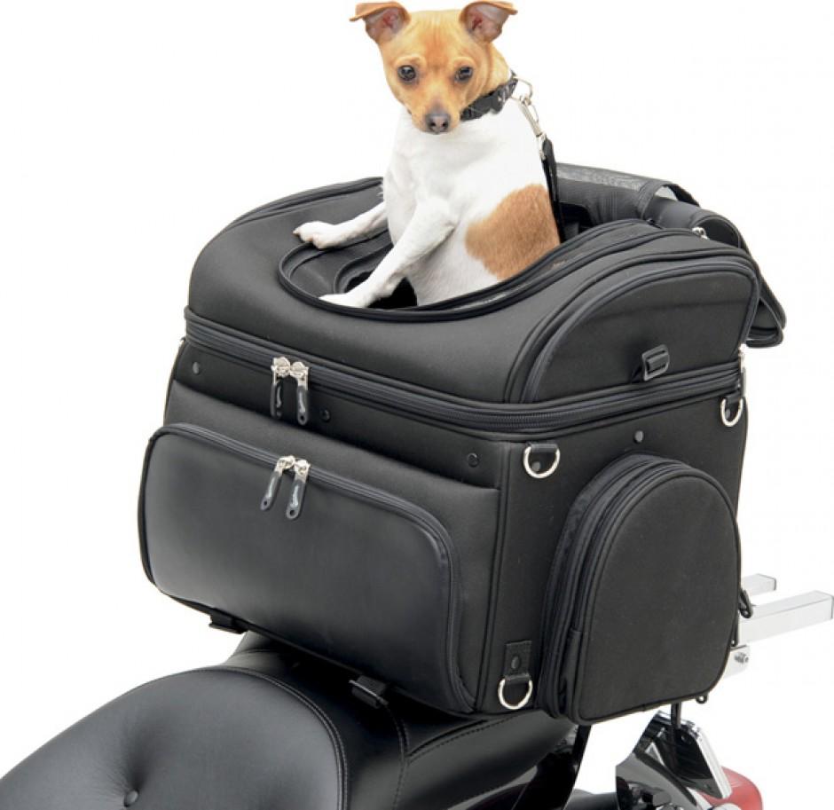 sac de porte bagage pour chien. Black Bedroom Furniture Sets. Home Design Ideas
