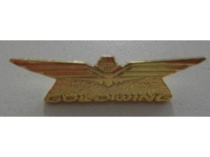 Pin's logo Goldwing